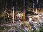 На трасі Київ-Ковель «БМВ» врізався в дерево – загинули 2 людини