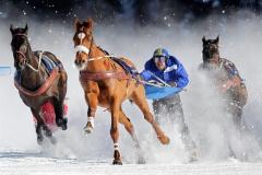 У Гідропарку відбудуться змагання з кінного скіджорінгу - фото