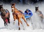 У Гідропарку відбудуться змагання з кінного скіджорінгу