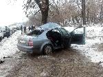 На Донеччині водій врізався в дерево – двоє загиблих