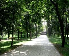 У Києві оновлять близько 20 парків і скверів - фото