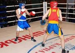 В Моршині пройшов боксерський турнір «Кубок Карпат» - фото