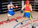 В Моршині пройшов боксерський турнір «Кубок Карпат»