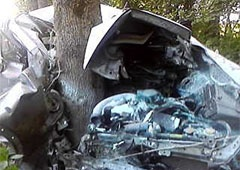 На Львівщині машина зіткнулася з деревом – двоє загиблих - фото