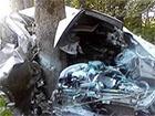На Львівщині машина зіткнулася з деревом – двоє загиблих