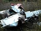 На Івано-Франківщині розбився літак, загинули двоє