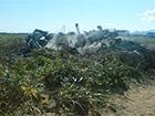 На Сахаліні розбився вертоліт