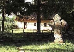Пекло поза чергою обіцяють губернатору Черкащини Тулубу у «Свободі» - фото
