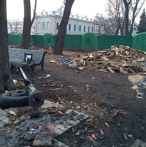 Екологи вимагають знайти та покарати винних у забрудненні Маріїнського парку - фото