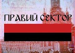 «Правий сектор» вимагає заборонити Партію регіонів та КПУ як злочинні угрупування - фото