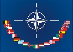 НАТО призупиняє співробітництво з Росією та активізує співпрацю з Україною - фото