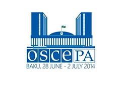 ОБСЕ визнала Росію «грубим» окупантом України - фото