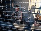Полонені під Лисичанськом терористи-росіяни – фото, відео