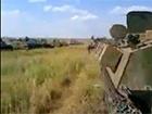 Відео, як кадирівці в складі броньованої колони російських військ готуються до вторгнення в Україну