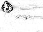 «Шпігель» представив розслідування збитого на Донбасі літака «Малайзійських авіаліній»