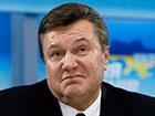 8,8 га лісів Януковича повернуто державі