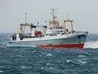 Біля берегів Камчатки затонув великий траулер
