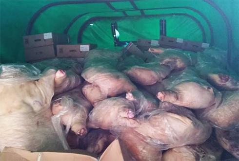 Комбат супроводжував 10 тон м'яса на окуповану частину Луганщини - фото