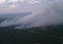 Під Чорнобилем масштабно горить суха трава - фото