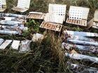 На Дніпропетровщині виявлено велику схованку зброї
