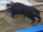 В Іспанії під час забігу з биками постраждало 11 людей