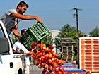 Навіщо знищувати, краще віддати нужденним – росіяни протестують проти знищення санкційних продуктів