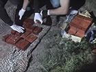 Затримано військовослужбовця, який намагався збути 20 кг тротилу