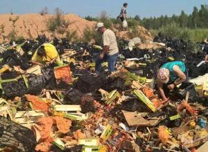 В Росії вже знищили 750 тонн санкційних харчів - фото