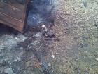 На Луганщині підірвалася машина з військовими, є загиблі