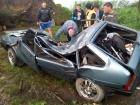 На Львівщині деревом розчавило машину з людиною (фото)