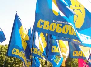 """""""Свободу"""" звинуватили в отриманні грошей від """"Партії регіонів"""" - фото"""