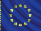 В ЄС розчаровані і стурбовані неповним запуском системи е-декларування