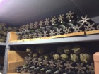 Під Києвом виявили бункер, заповнений зброєю та снарядами