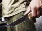В Ірпені тяжко поранили ножем нацгвардійця та його собаку