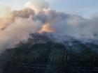 Площу пожежі у Зоні відчуження зменшено вдвічі