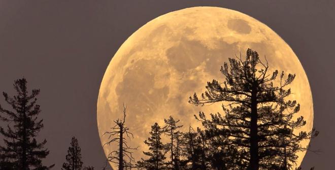 Цієї ночі Місяць буде найбільшим у році - фото