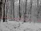 У лісі на Львівщині знайшли загиблих батька і сина
