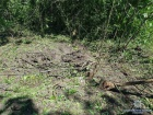 На Донеччині внаслідок обстрілу терористів загинула дівчинка