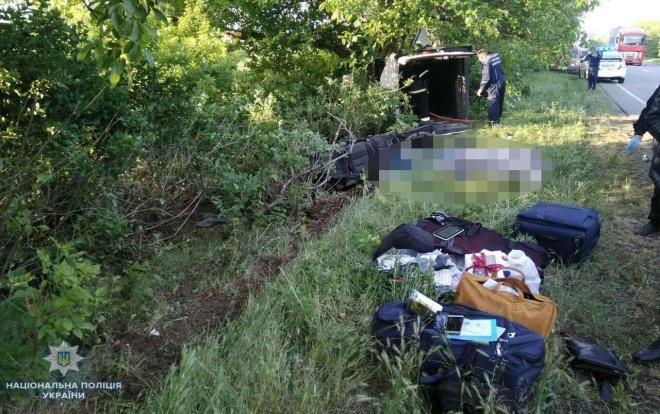 На Миколаївщині автівка врізалася в дерево: 5 загиблих - фото