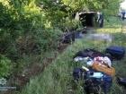 На Миколаївщині автівка врізалася в дерево: 5 загиблих