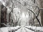 Вихідними в Києві очікується снігопад