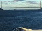 Під час виборів в Чорному морі знаходитиметься група кораблів НАТО
