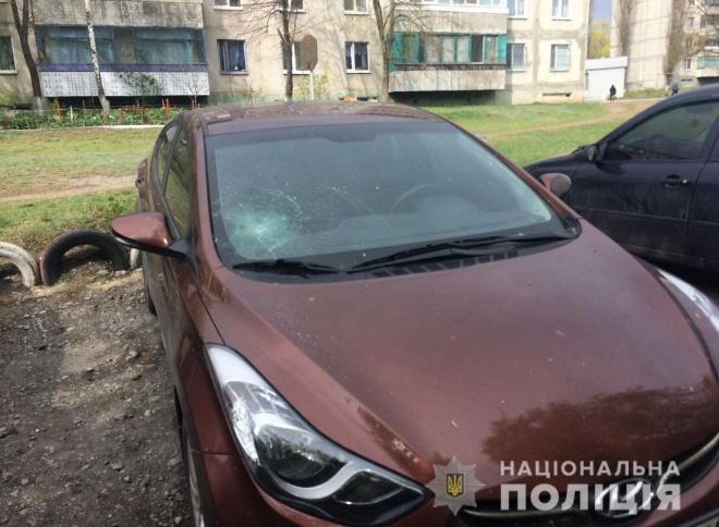Чоловік пошкодив 25 автомобілів на Дніпропетровщині - фото