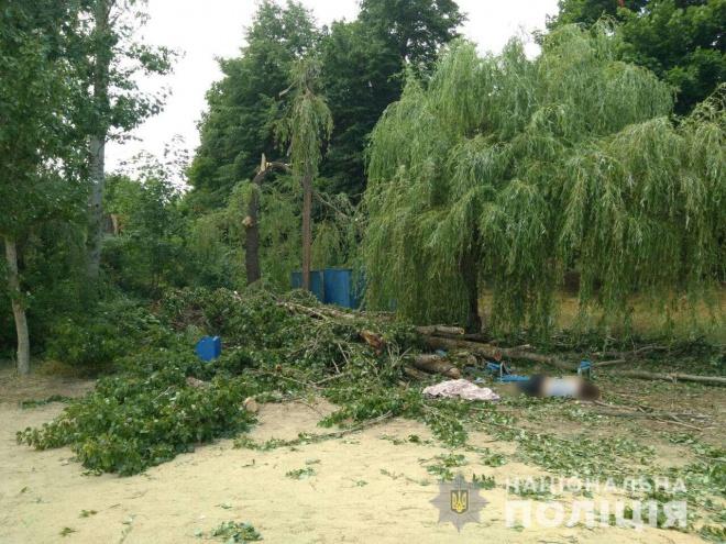 Дерево придавило людей в санаторії на Харківщині, загинула жінка - фото