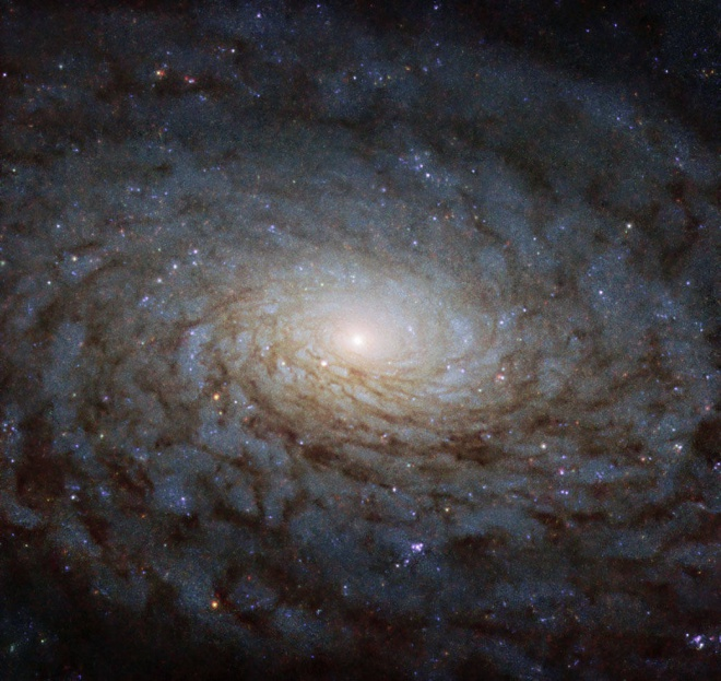 Хаббл показав галактику, схожу на «портал в інший вимір» - фото