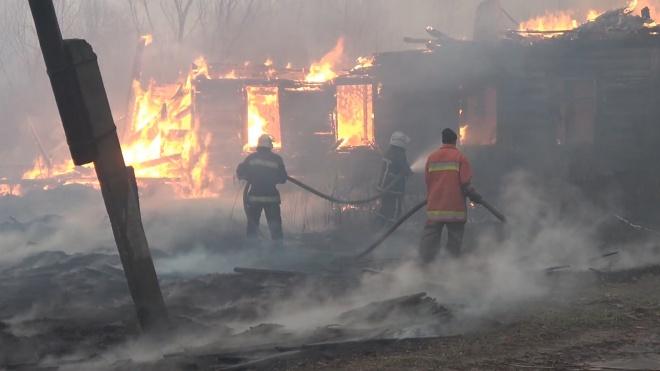 На Житомирщині вогонь добрався до сіл - фото