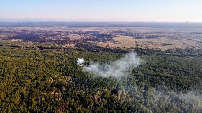 Нацгвардія почала антидиверсійну операцію через пожежі в Чорнобильській зоні - фото