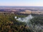 Нацгвардія почала антидиверсійну операцію через пожежі в Чорнобильській зоні