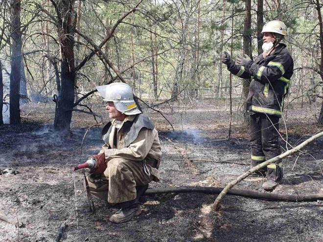 Ситуація з пожежами на Житомирщині та Київщині на ранок 26 квітня - фото