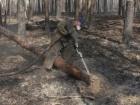 На Житомирщині та Київщині продовжується гасіння окремих осередків тління